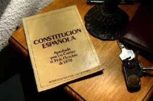 Ejemplar-de-la-Constitucion-Es_54205474240_51347059679_342_226
