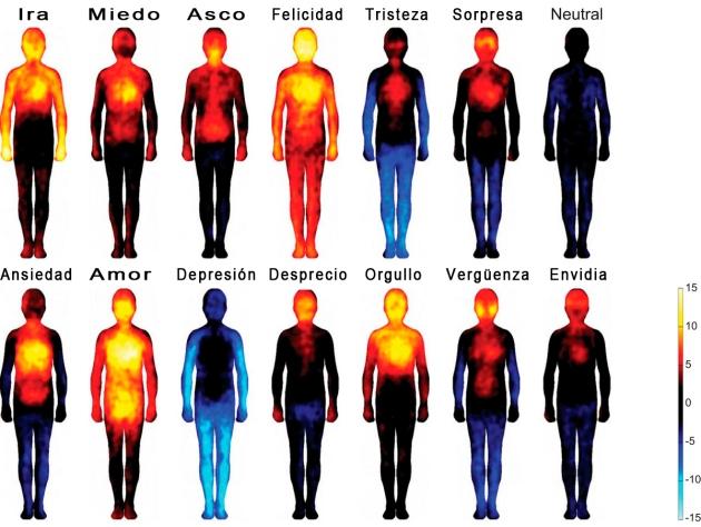 mapa corporal emociones